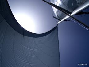 sww_sail_pic
